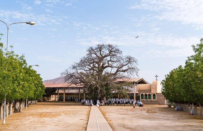Gigantic boabab tree Keren
