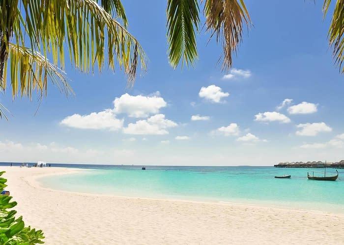 Isole Dahlak,- Eritrea Red Sea Dahlak Islands